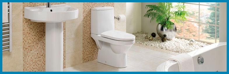 toilet-installation.jpg